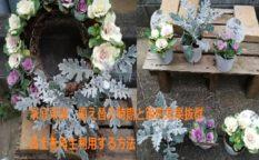 家庭菜園 古土再生利用